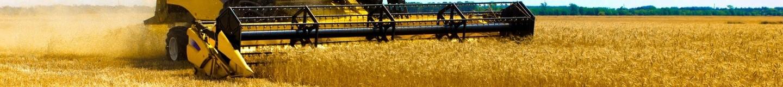 11 октября страна будет отмечать день работника сельского хозяйства и перерабатывающей промышленности.