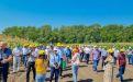 День поля гибридов кукурузы Российской селекции 2021 - Image preview 2