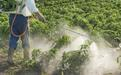 Применение пестицидов в Японии - Image preview 2
