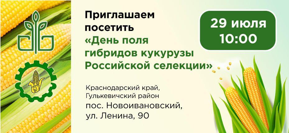 День поля гибридов кукурузы Российской селекции - ООО ТД Кирово-Чепецкая Химическая Компания