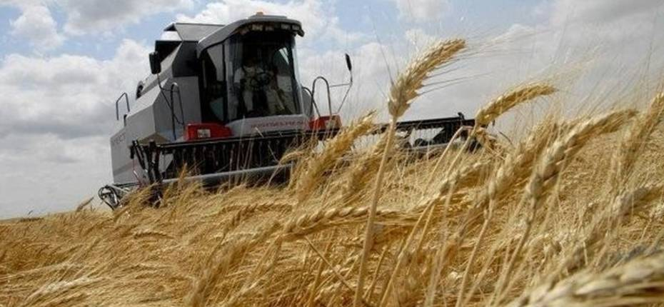 Уборка зерновых, озимой сев в Республике Марий Эл - ООО ТД Кирово-Чепецкая Химическая Компания