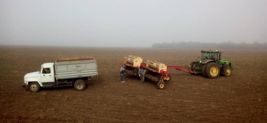 Угроза озимым посевам на территории Ростовской области - ООО ТД Кирово-Чепецкая Химическая Компания