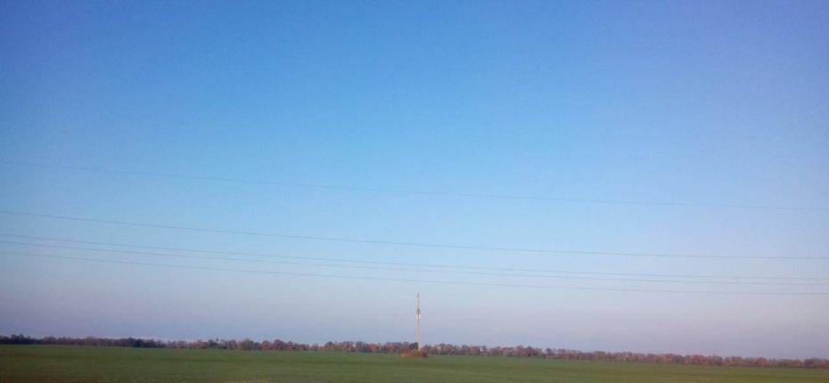 Хлебная жужелица на полях Ростовской области - ООО ТД Кирово-Чепецкая Химическая Компания