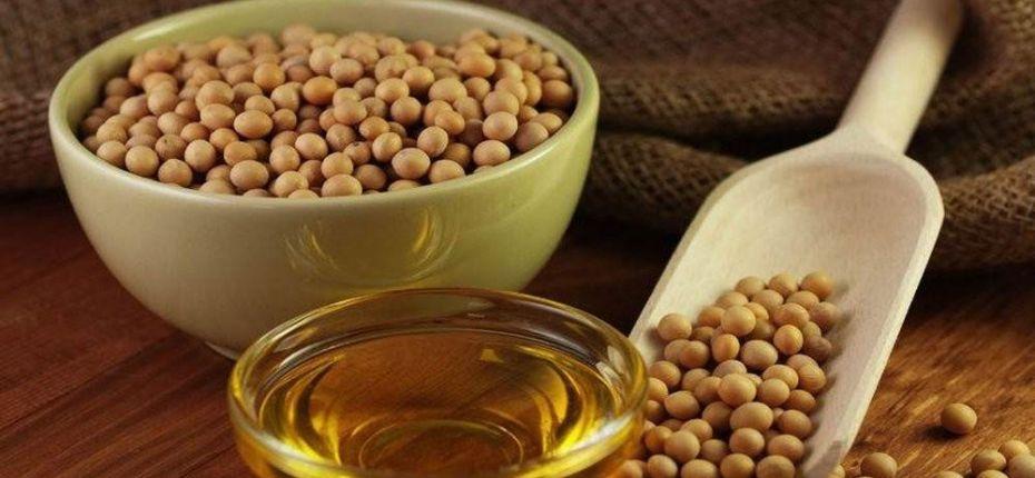 Амурское соевое масло теперь популярно в Китае - ООО ТД Кирово-Чепецкая Химическая Компания