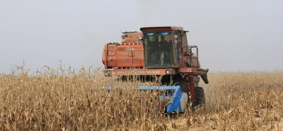 Амурские земледельцы приступили к уборке кукурузы - ООО ТД Кирово-Чепецкая Химическая Компания