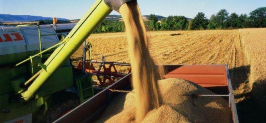 В Тамбовской области собран первый миллион тонн зерна - ООО ТД Кирово-Чепецкая Химическая Компания