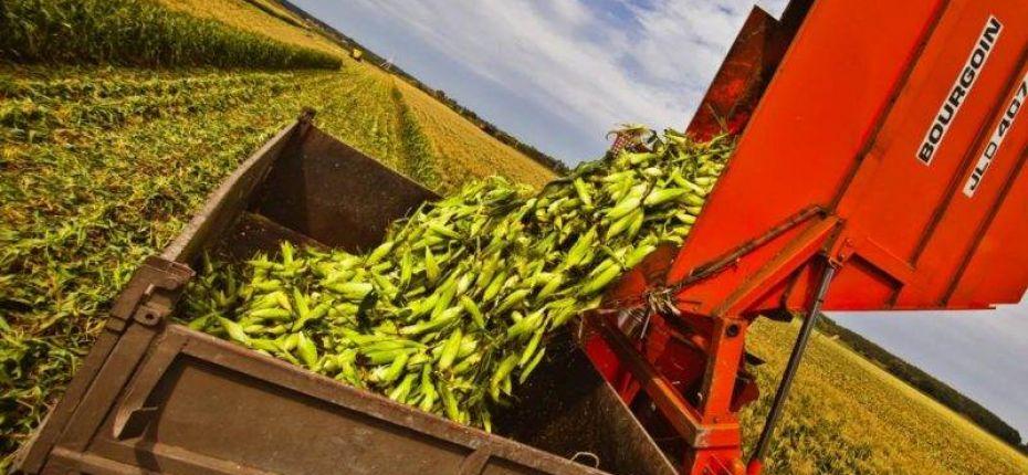 Тамбовщина заканчивает уборку урожая-2017 - ООО ТД Кирово-Чепецкая Химическая Компания