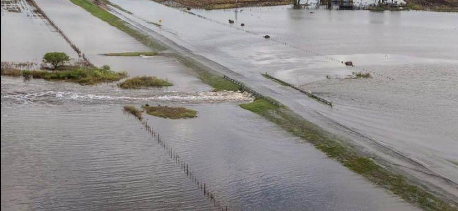 Ливни убили в Приамурье больше 85 тысяч гектаров посевов - ООО ТД Кирово-Чепецкая Химическая Компания