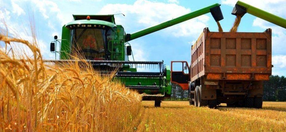 Аграрии Омской области собрали 3 млн. тонн зерна - ООО ТД Кирово-Чепецкая Химическая Компания