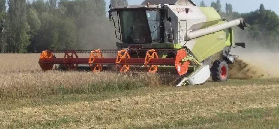 Тамбовская область – один из лидеров по производству зерна в ЦФО - ООО ТД Кирово-Чепецкая Химическая Компания