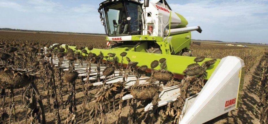 В Пензенской области собрали рекордный урожай масличных - ООО ТД Кирово-Чепецкая Химическая Компания