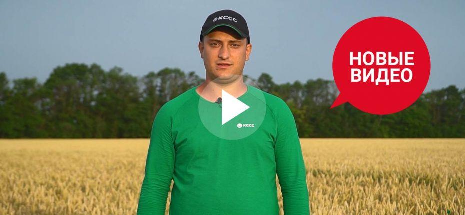 Премьера серии фильмов о защите сельскохозяйственных культур уже на сайте - ООО ТД Кирово-Чепецкая Химическая Компания