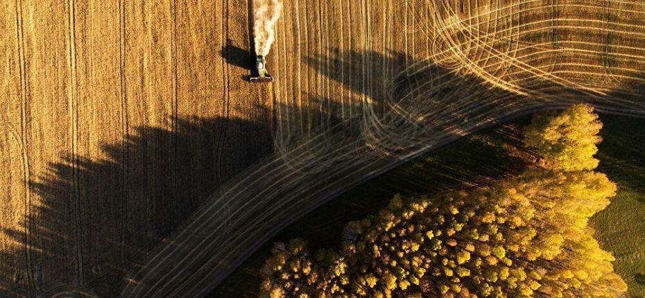 Узбекистан будет арендовать российские земли для выращивания сельхозпродукции - ООО ТД Кирово-Чепецкая Химическая Компания