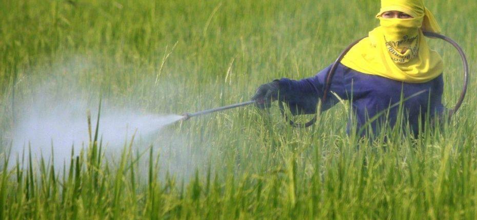Применение гербицидов в развитых странах - ООО ТД Кирово-Чепецкая Химическая Компания