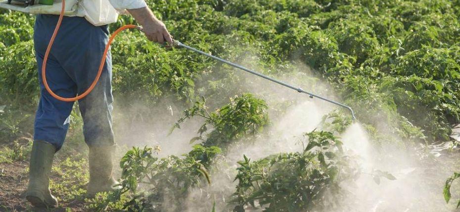 Применение пестицидов в Японии - ООО ТД Кирово-Чепецкая Химическая Компания