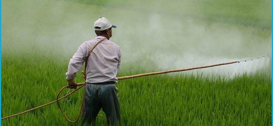 Европа призналась необходимость справедливо оценивать использование пестицидов - ООО ТД Кирово-Чепецкая Химическая Компания