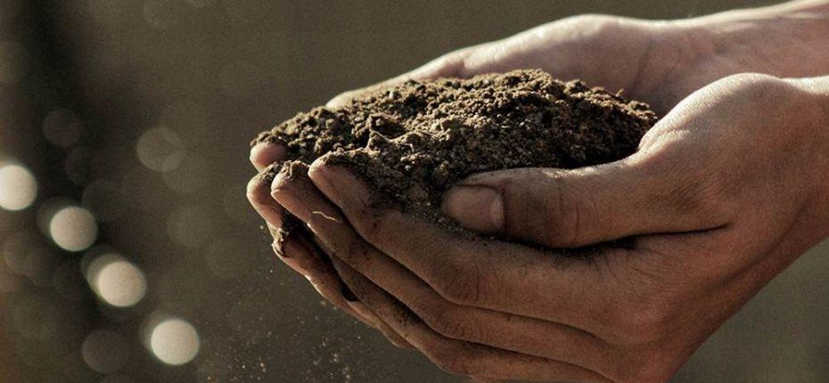 Ученые научились превращать пестициды в удобрения  - ООО ТД Кирово-Чепецкая Химическая Компания