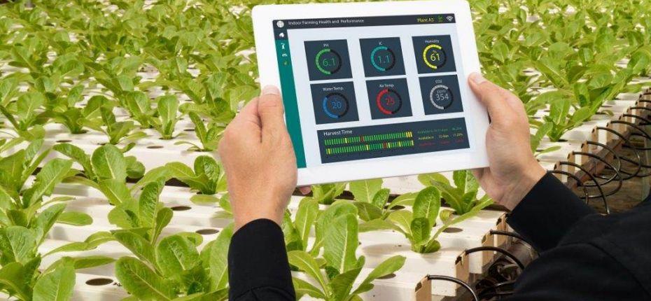 Ученые учатся определять потенциал роста растений - ООО ТД Кирово-Чепецкая Химическая Компания