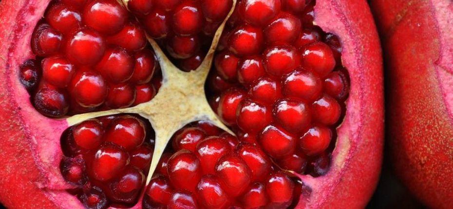 Влияния климата на качество урожая плодовых культур - ООО ТД Кирово-Чепецкая Химическая Компания