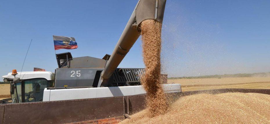 Снижение экспорта пшеницы из РФ  - ООО ТД Кирово-Чепецкая Химическая Компания
