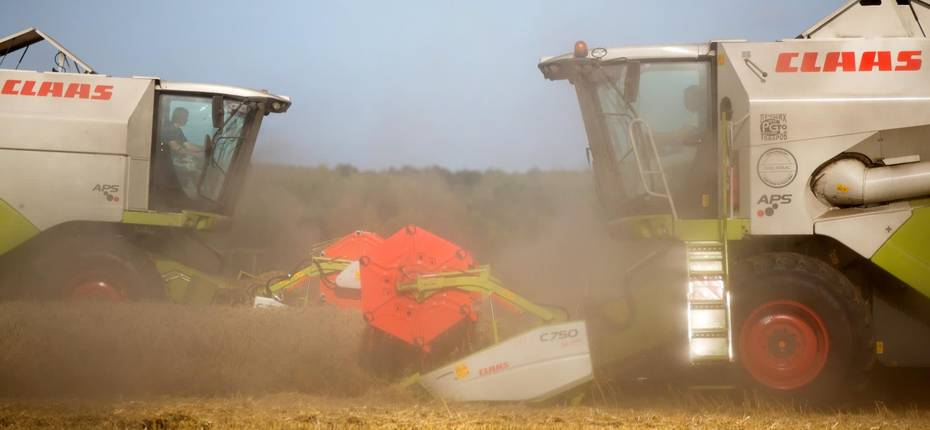 Внутренние цены на пшеницу растут - ООО ТД Кирово-Чепецкая Химическая Компания