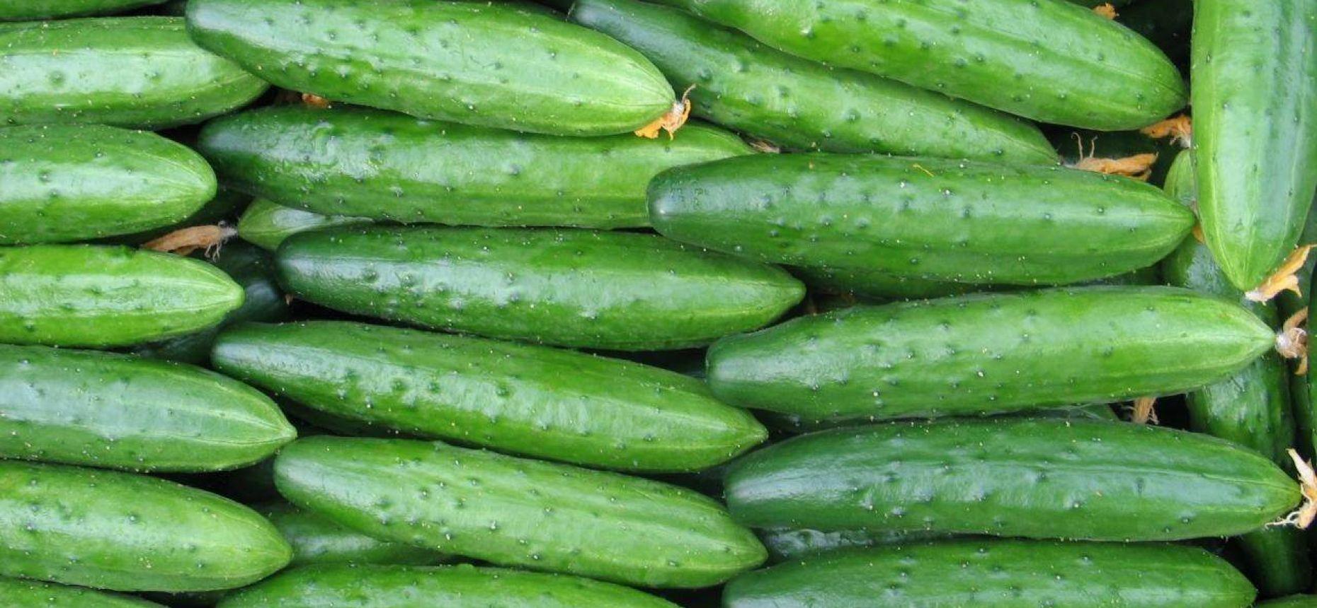 Название какого овоща происходит от слова «незрелый»