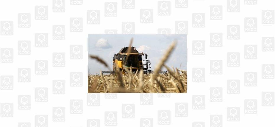 День поля «ВолгоградАГРО»
