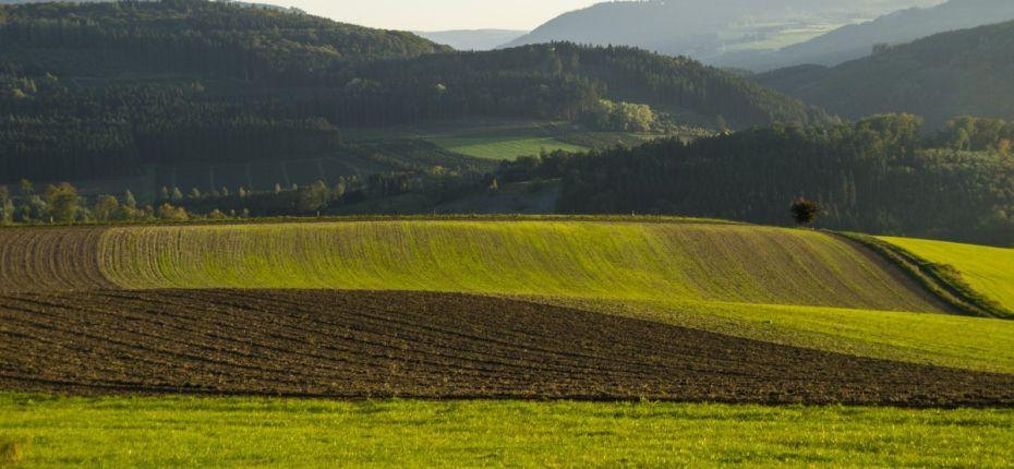 Агротехнологии. Интерагромаш 2020