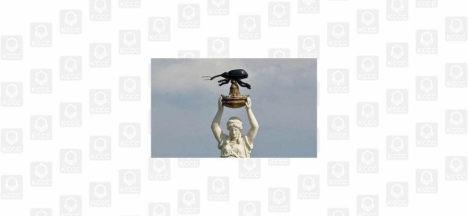 Памятник насекомому