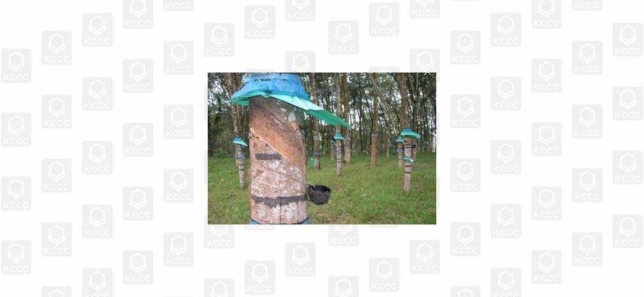 Дерево-бензоколонка