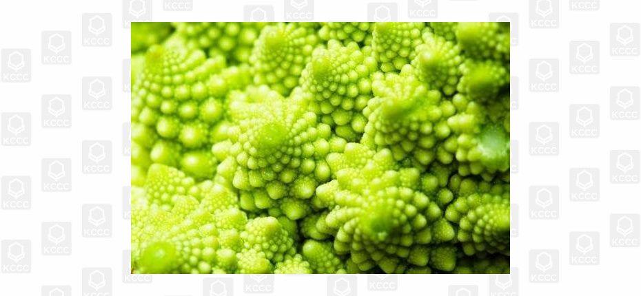 Овощи имеют соцветия в виде фракталов