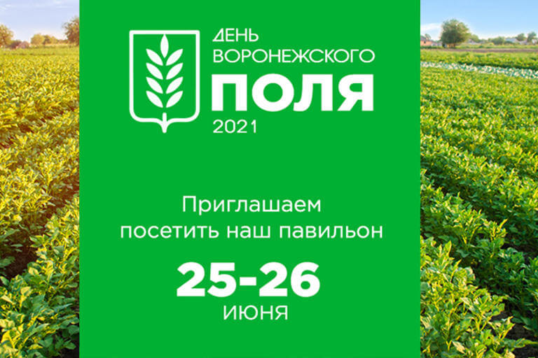 День Воронежского Поля 2021