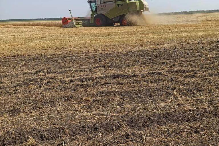 В  Белгородской области завершилась уборка зерновых