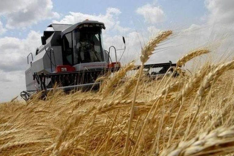 Уборка зерновых, озимой сев в Республике Марий Эл