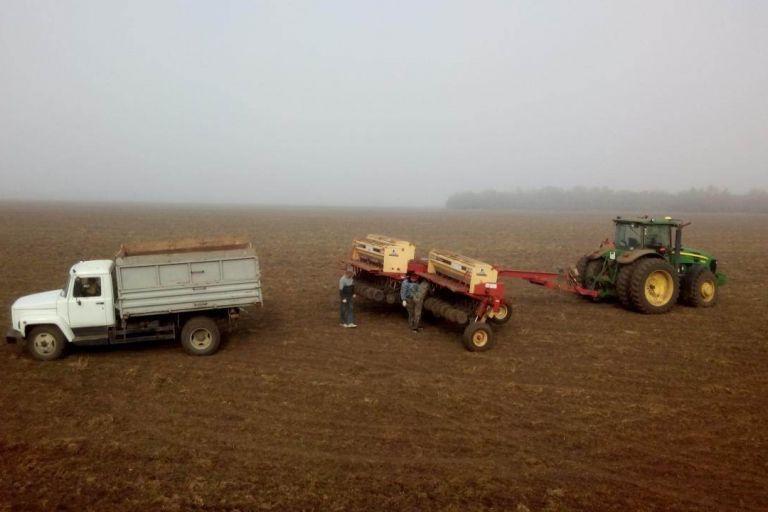 Угроза озимым посевам на территории Ростовской области