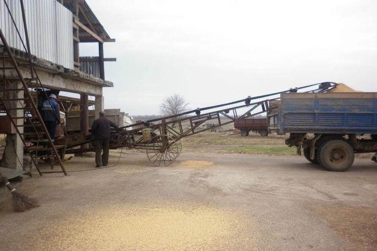 На Дону впервые собрано 10,5 млн тонн зерна