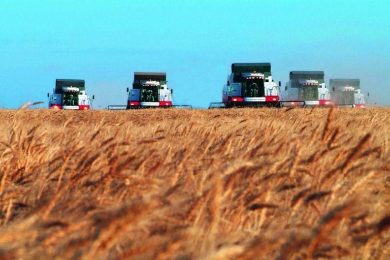 У аграриев Ростовской области начинается жаркая пора жатвы