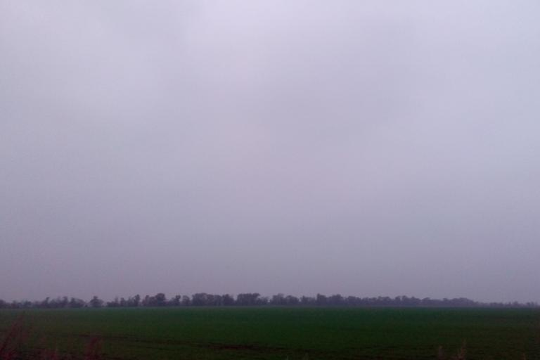 На полях Ростовской области близится в завершению весь комплекс осенних полевых работ