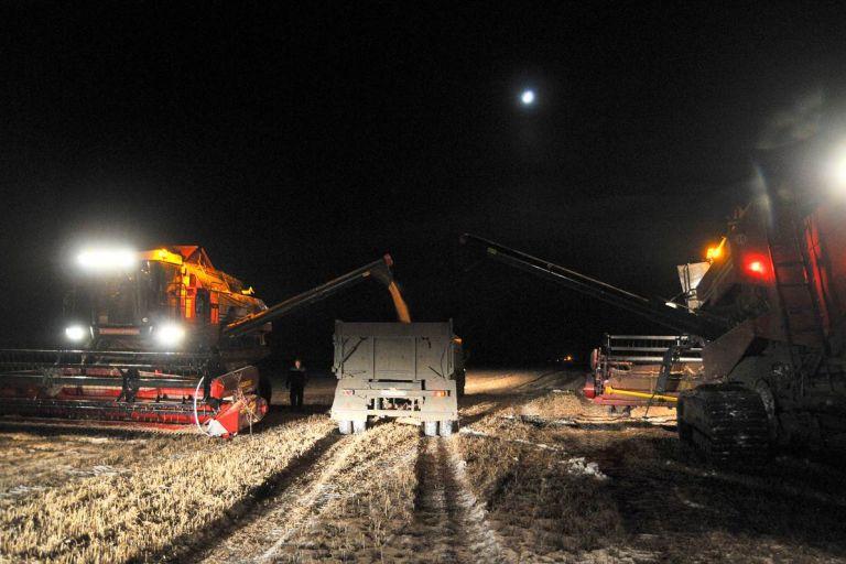 Снегопад заставил амурских аграриев перейти на ночную уборку сои