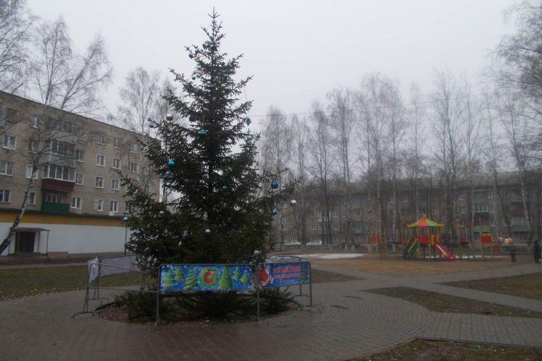 Тамбовщина встретила 2018 год без снега.
