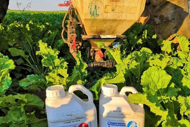 Фунгицидно-инсектицидная защита сахарной свеклы стартовала 21 июня 2019 г