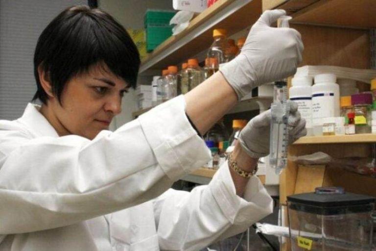 Учёные работают над созданием азотфиксирующих зерновых