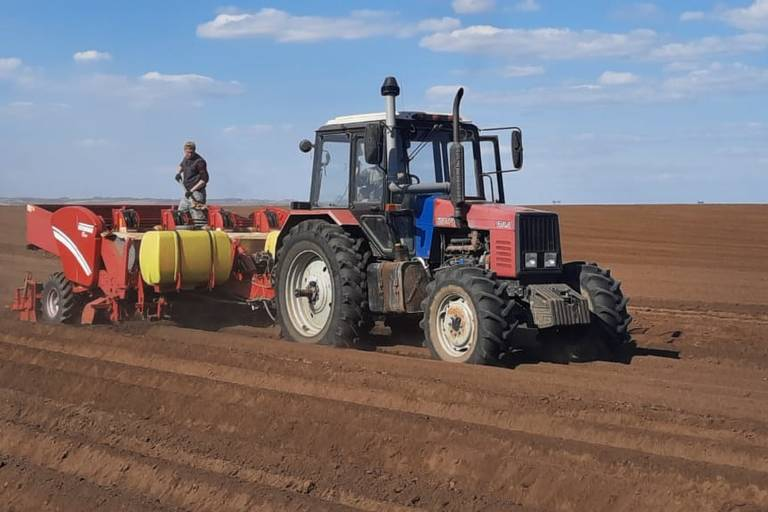 В Красноярском крае засеяно 62% сельхозплощадей