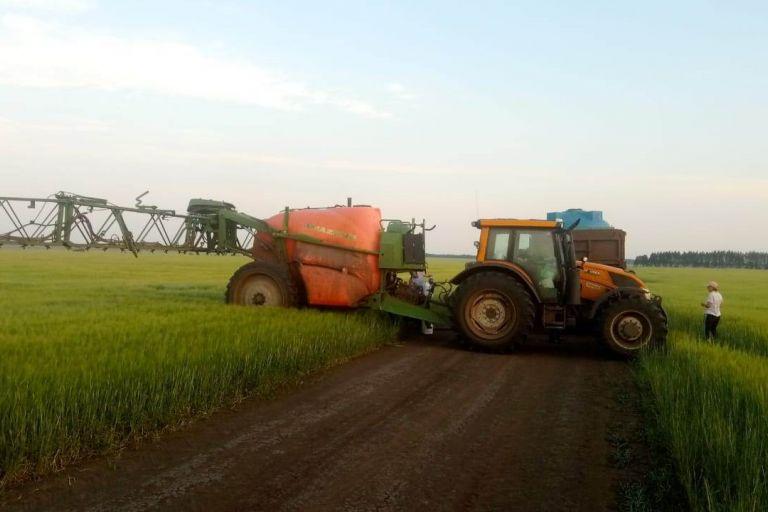 В Тамбовской области испытывают биопрепаратыдля сельского хозяйства.