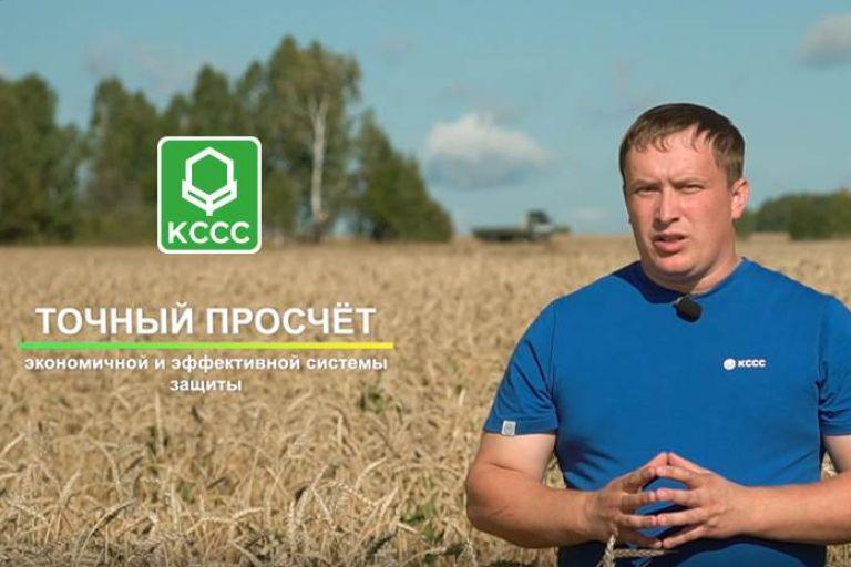 Особенности системы защиты яровой пшеницы в Новосибирской области препаратами Кирово-Чепецкой Химической Компании