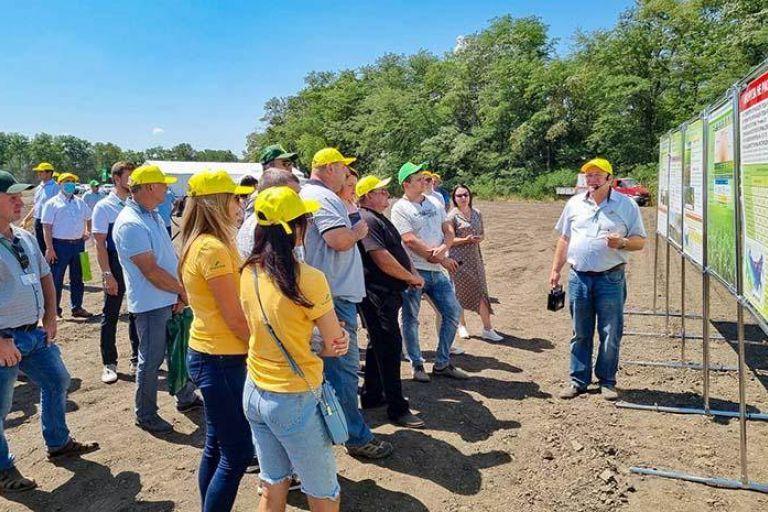 День поля гибридов кукурузы Российской селекции 2021