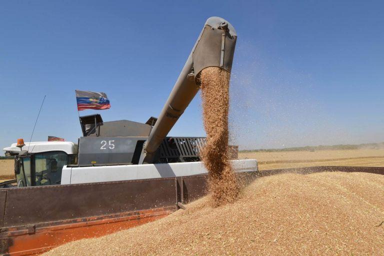 Снижение экспорта пшеницы из РФ