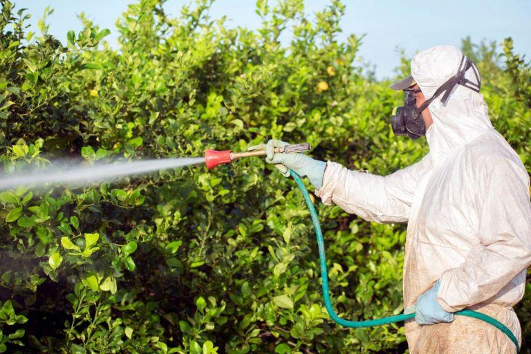 В России усилят государственный контроль за безопасным обращением с пестицидами и агрохимикатами
